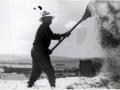 Labores del campo